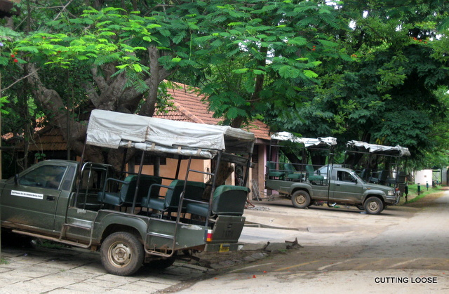 Kabini River Lodge Cutting Loose