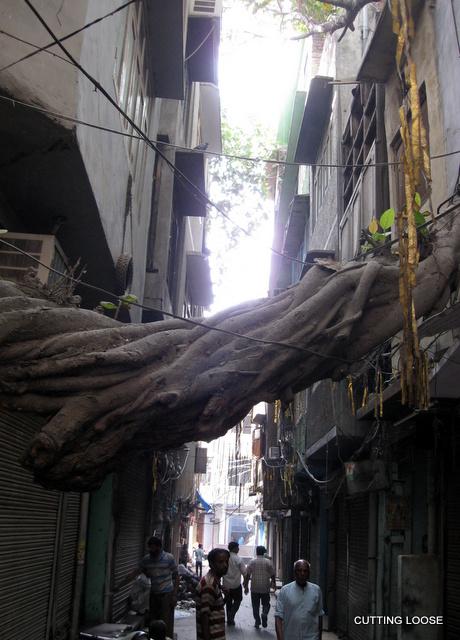 amritsar 070