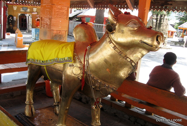 A beaming Nandi at the ancient Chaurasi Temple in Bharmour