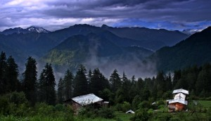 shangarh farm