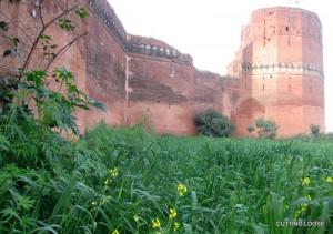 Bajwara Fort, Hoshiarpur